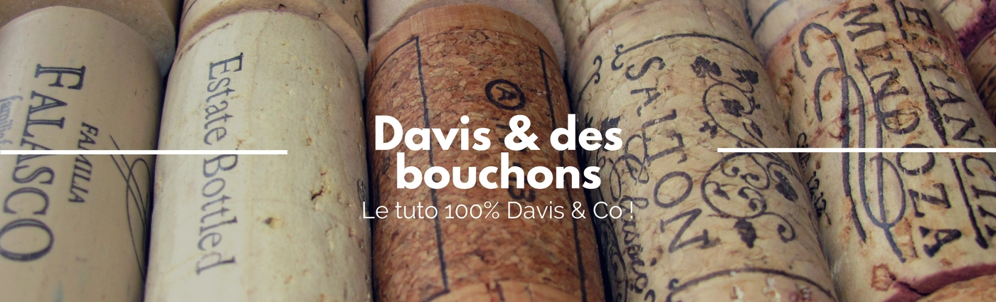 Tuto nichoir oiseau article blog Davis & Co