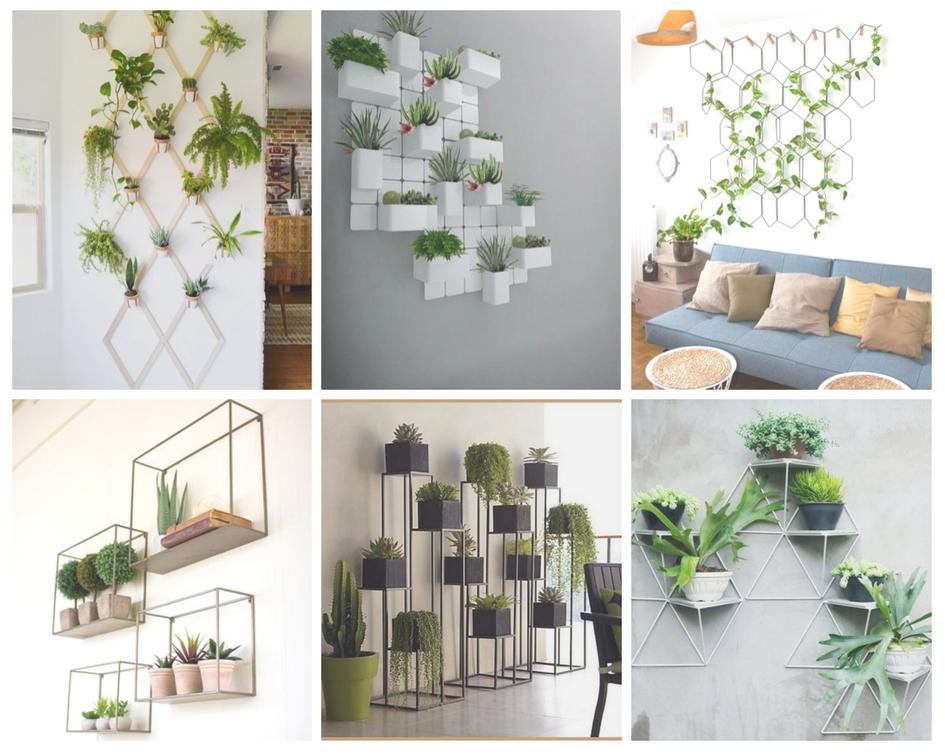 Graphisme - Plantes - Davis&Co
