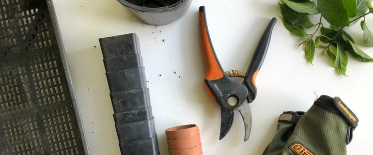 outils de jardin en hiver